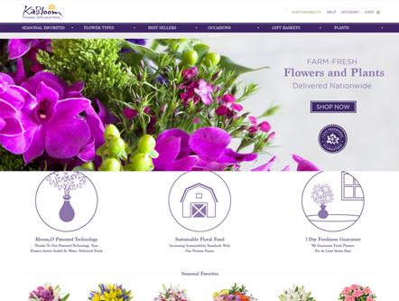 Kabloom - eCommerce Web Development